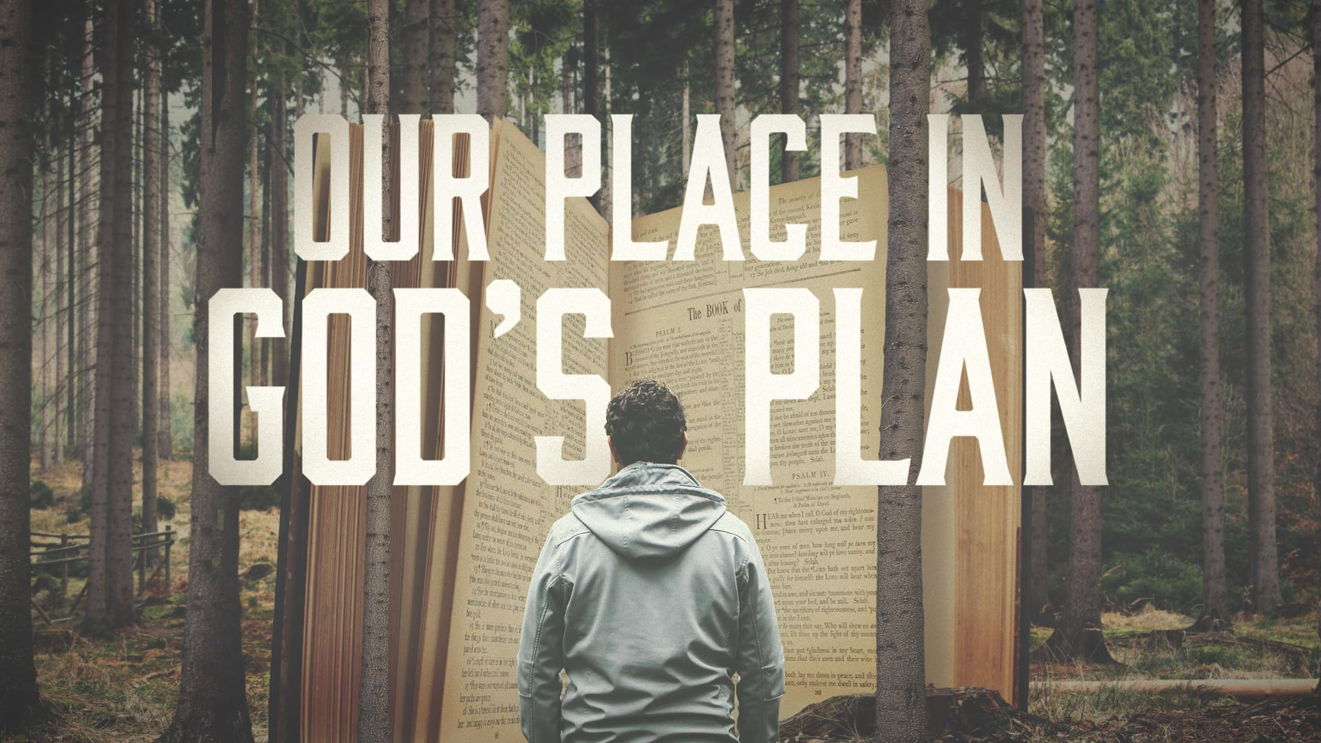 Our Place in God's Plan