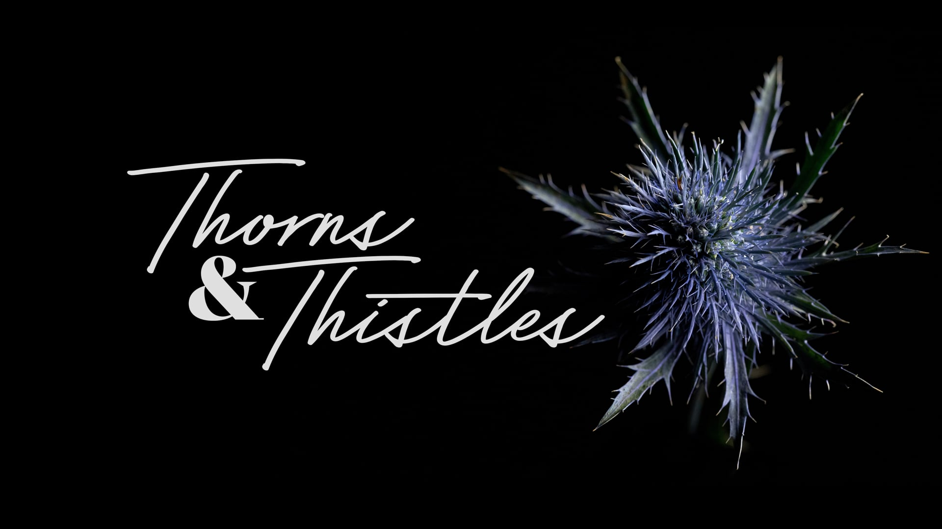 Thorns and Thistles