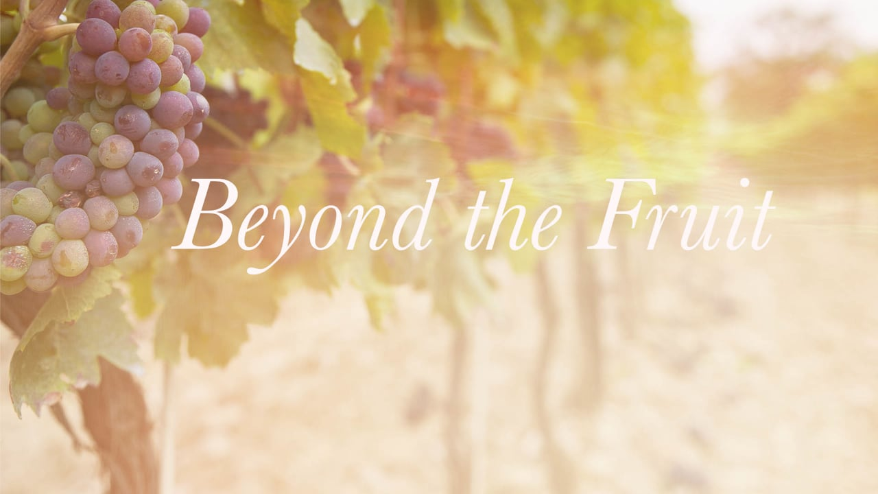 Beyond the Fruit