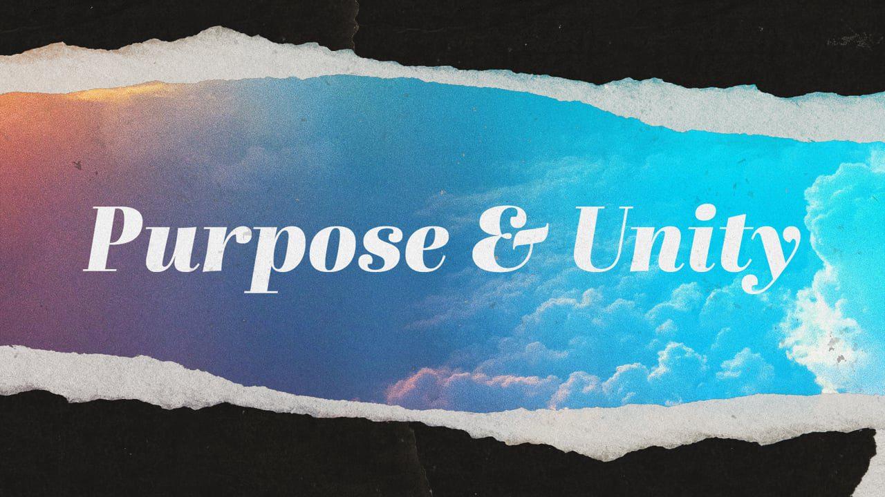 Purpose & Unity