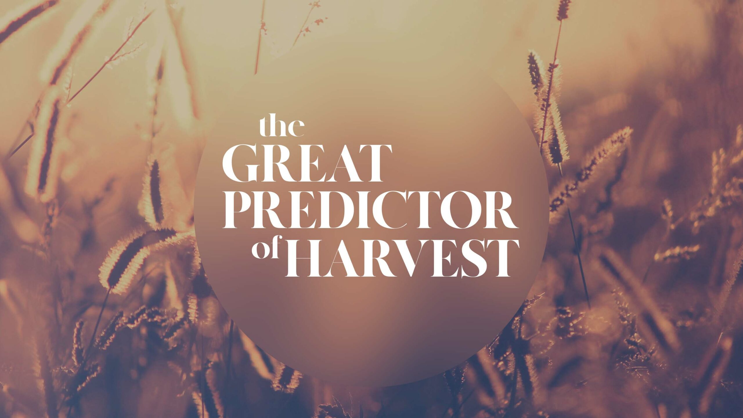 The Great Predictor of Harvest