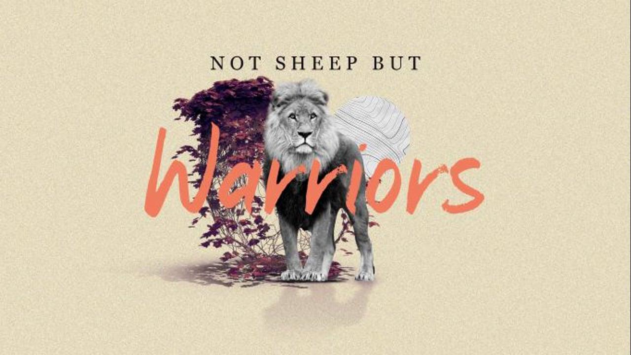 Not Sheep But Warriors